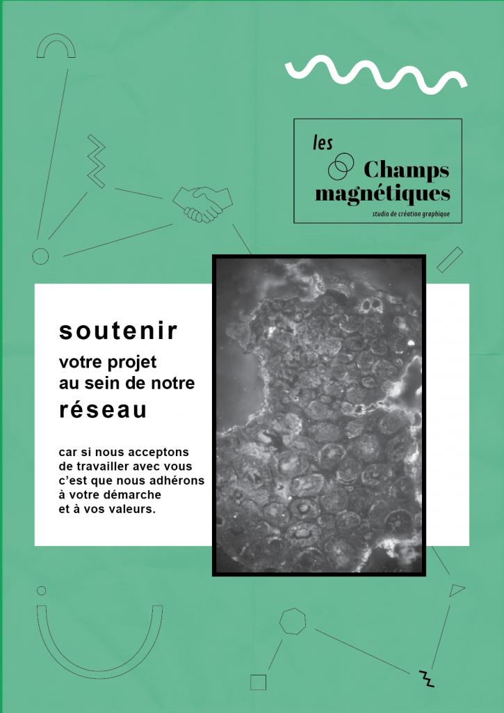 Charte illustrée, Les champs magnétiques, réseau
